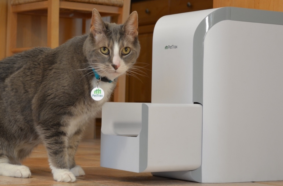PetTrax RightBite Automatic Pet Feeder