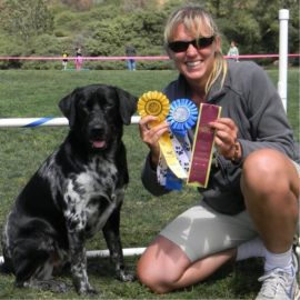 Dog Training – Achieving Greatness Takes Hard Work