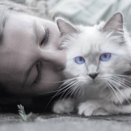 National Pet Day – Visit your local animal shelter today